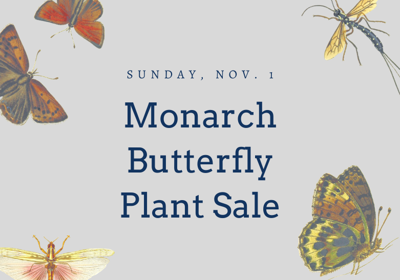 Sunday, November 1 Monarch Butterfly Plant Sale