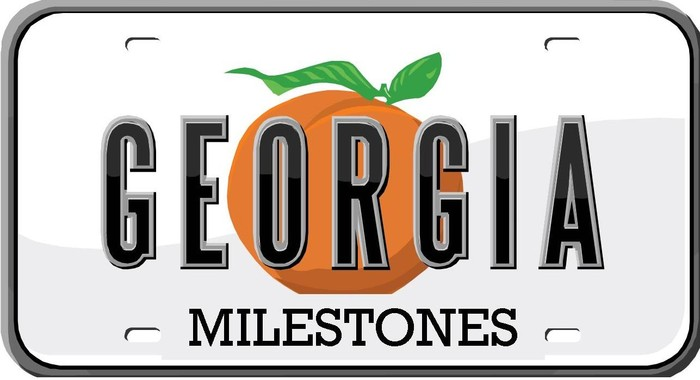 Image Georgia Milestones License Plate