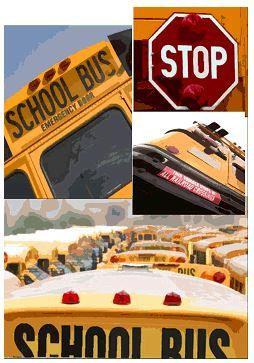 Multiple school buses with stop sign