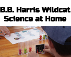 Home Science Experiments